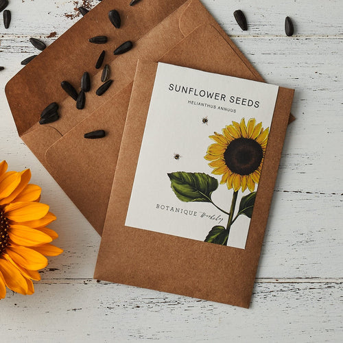 Sunflower Garden Seeds