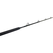 BlacktipH 30-50lb Standup Fishing Rod