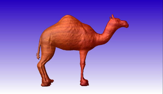 Camel CNC Relief Model -  3D CNC Vector Art