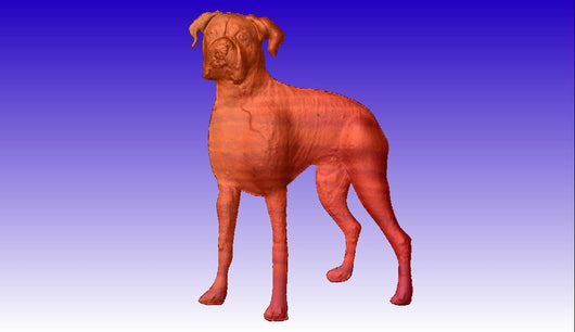 Boxer Dog Vector Relief Model -  3D CNC Vector Art