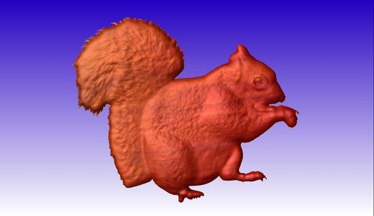 Squirrel Vector Relief Model -  3D CNC Vector Art