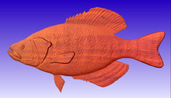 Crappie Fish Vector Relief Model -  3D CNC Vector Art