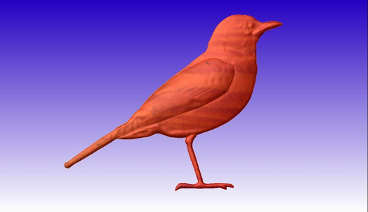 Robin Vector Relief Model -  3D CNC Vector Art