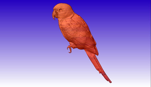 Parrot 3D Vector Relief Model -  3D CNC Vector Art