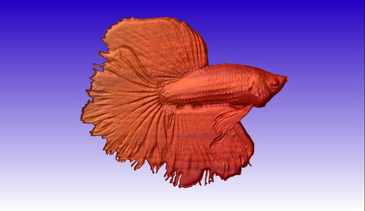 Beta Fish CNC Relief Model and 3d Clipart -  3D CNC Vector Art