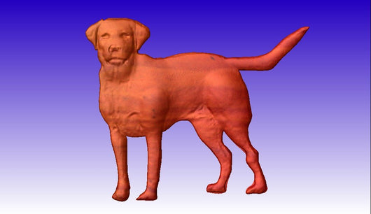 Labrador Retriever Vector Relief Model -  3D CNC Vector Art