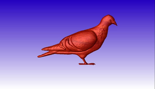 Pigeon Vector Relief Model -  3D CNC Vector Art