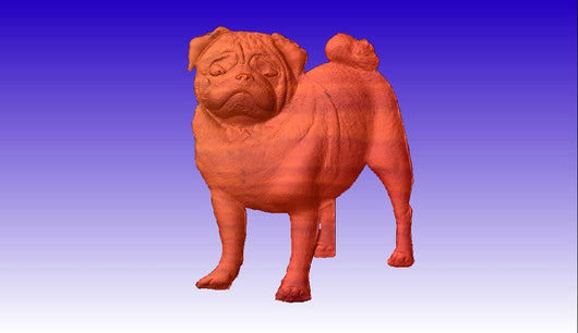Pug Vector Relief Model 3D Clipart -  3D CNC Vector Art
