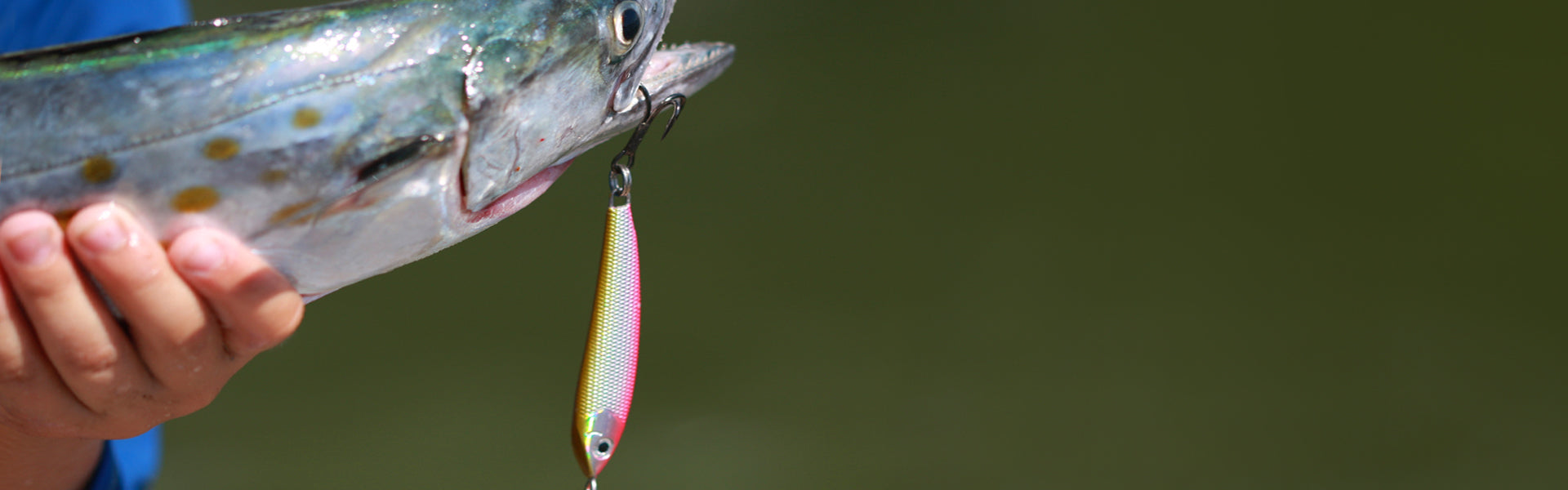 Details about  /3 New Jig N Minnow 3//4 OZ Black /& Gold Great for Spanish Mackerel Blue fish