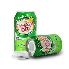 Canada Dry Stash Can