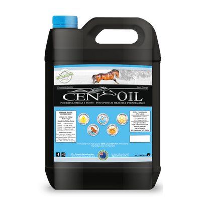 CEN Oil-feed-Southern Sport Horses