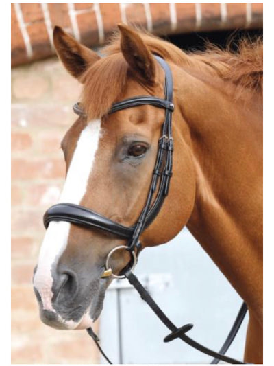 Premier Equine  Lambro Anatomic Bridle with Crank Noseband