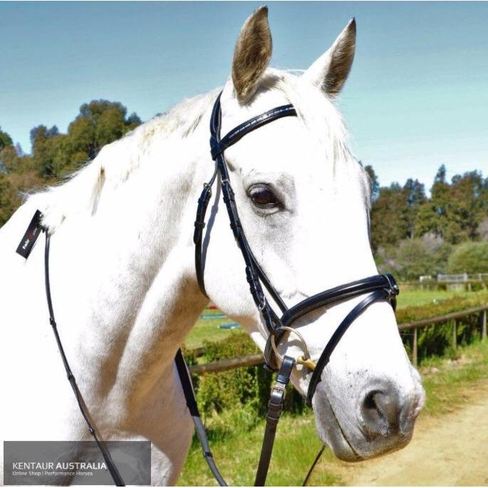 Kentaur Hanoverian Bridle with Decorative Browband and Removable Flash-bridle-Southern Sport Horses