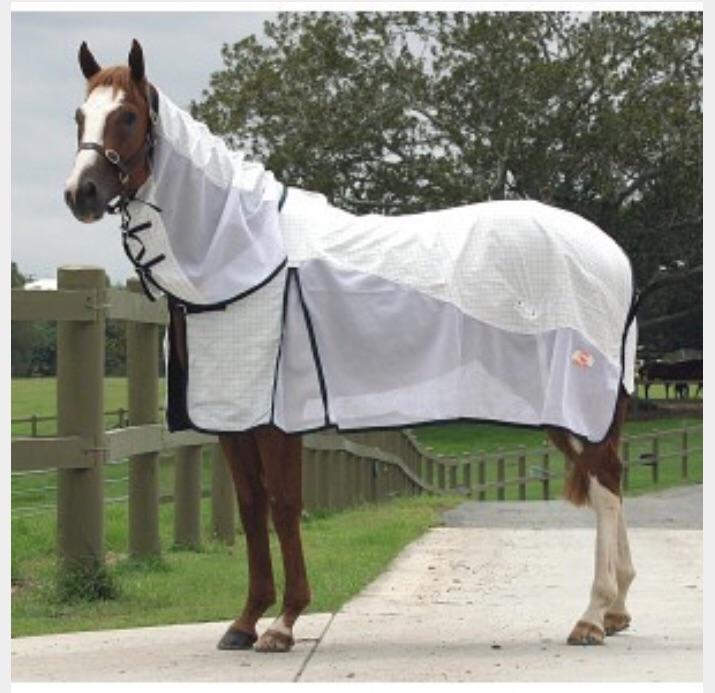 Kool Master Tear-Stop Air Combo-rug-Southern Sport Horses