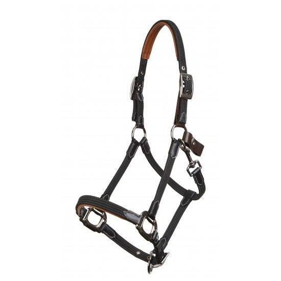 leather horse halter and head collar