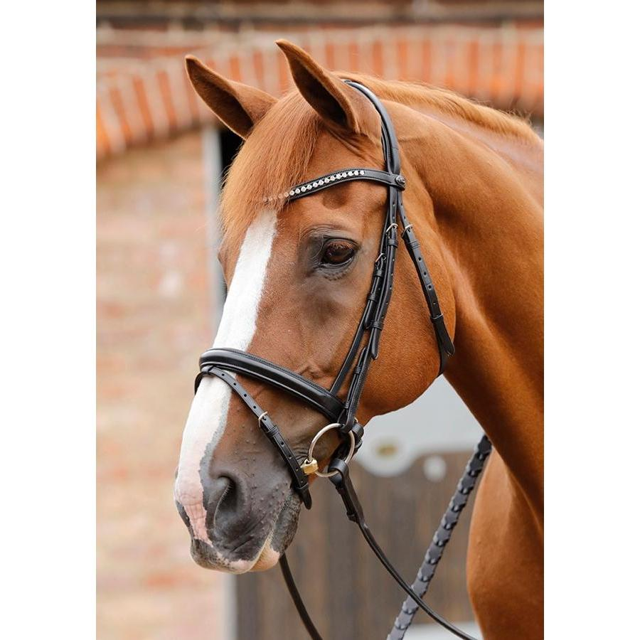 Premier Equine Bellissima Bridle With Diamante Brow Band-bridle-Southern Sport Horses