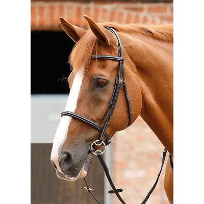 Premier Equine Mossimo Cavesson Bridle-bridle-Southern Sport Horses