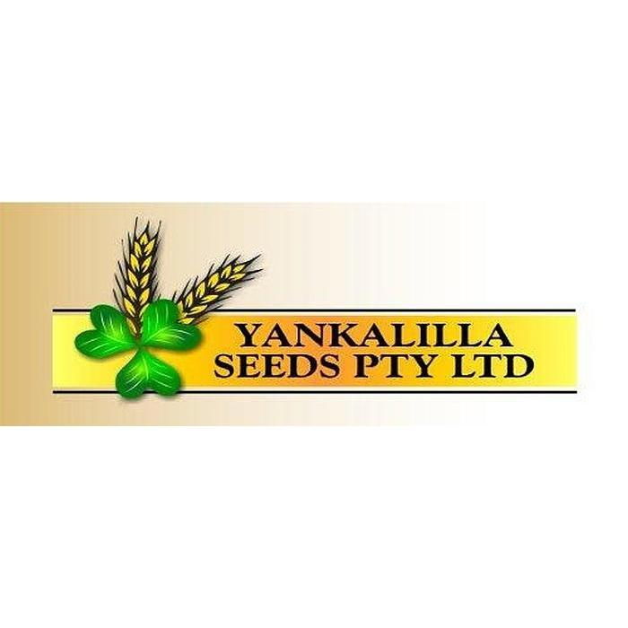 Yankalilla Seeds Cracked Oats 25kg-Horse Feed-Southern Sport Horses