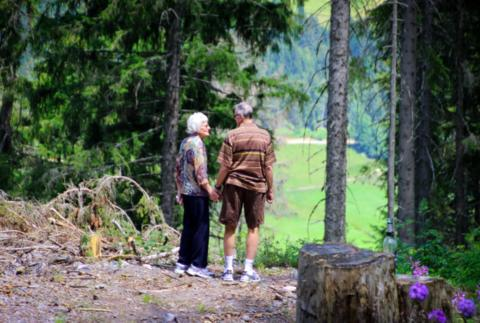 Elderly Couple Looking For Mobility Scooter in Wilderness