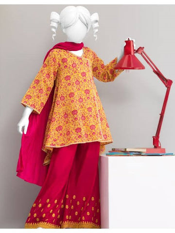 Pakistani Eid Dresses for Girls in Chicago from Us