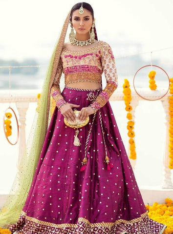 Wedding Dress Ideas Lehenga Choli