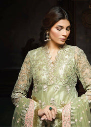 Beautiful dress in chiffon by Ayra in light pistachio green and pink color