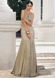 Beautiful embroidered Asian bridal dress in alluring gold color