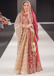 Beautiful embroidered Asian bridal outfit in multi color