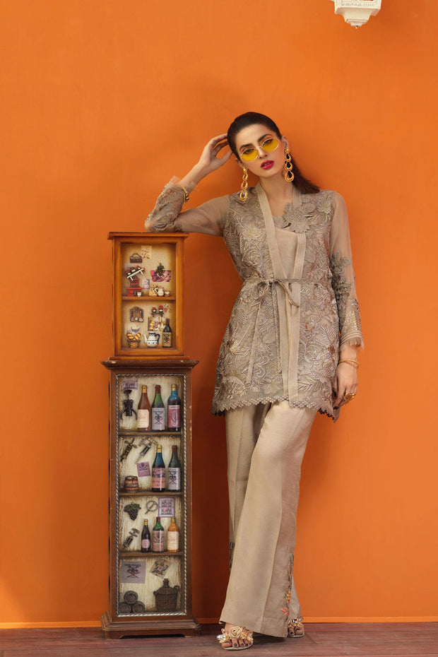 Aesthetic organza Pakistani clothes 2019 2