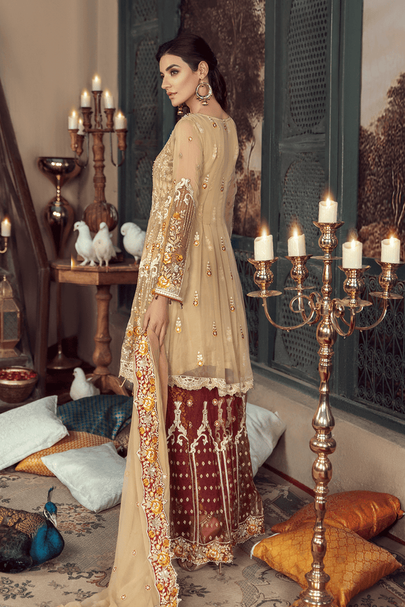 Beautiful and Simple Barat Dress for Women - Back