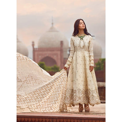 Decent Pakistani party wear dress online
