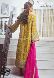 Designer Pakistani Party Wear with Embroidery Backside Look