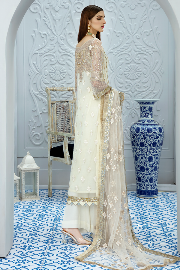 Designer embroidered net outfit