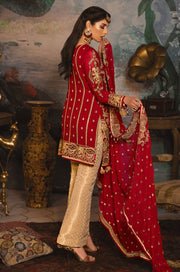 Dress from famous Pakistani designer collection