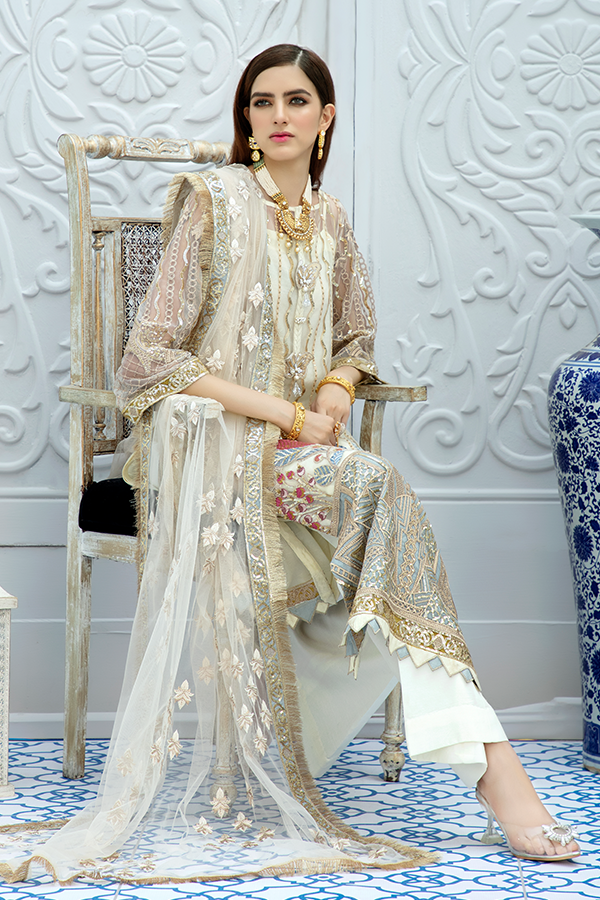 Embroidered Pakistani party wear