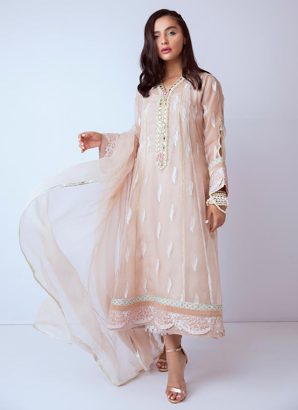 Beautiful hand worked Pakistani dress in beige color # P2274