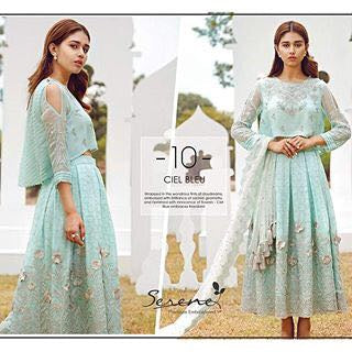 Chiffon dress by sareen with threds embroidery Model#C