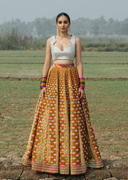 Indian Bridal Lehnga Choli Dress for Wedding Front View