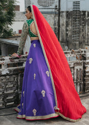 Indian Lehnga Choli for Bride in Elegant Style Backside View