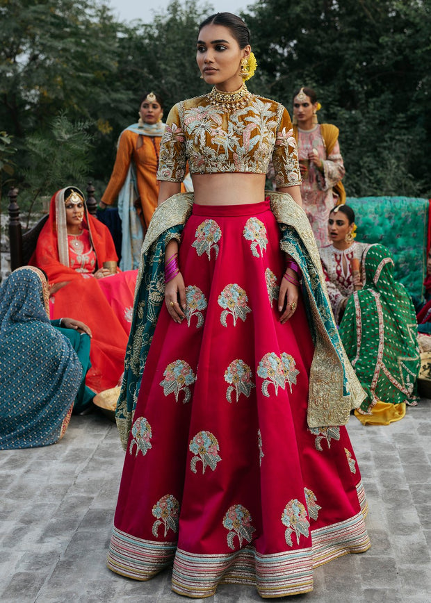 Indian Red Lehnga with Choli for Wedding Front View