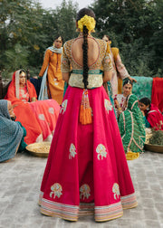 Indian Red Lehnga with Choli for Wedding Backside