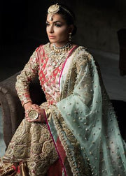 Beautiful Indian bridal gharara dress embroidered for wedding wear