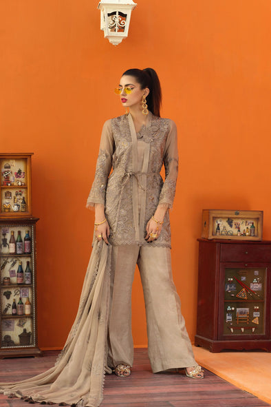 Aesthetic organza Pakistani clothes 2019
