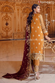 Latest Pakistani Chiffon Collection for Party Backside Look