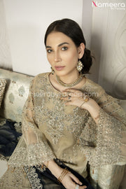 Latest Pakistani Dress Chiffon for Wedding Party Neckline View