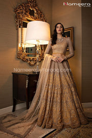 Latest Pakistani Lehenga Choli Design for Party Clear Look