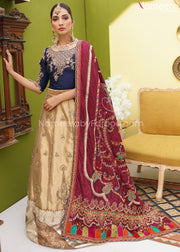 Latest Pakistani Lehenga Choli Online Shopping