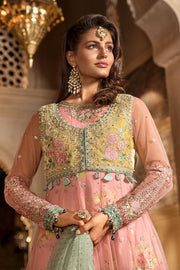 Latest Embroidered Pakistani Designer Dress in Pink Color Neckline View