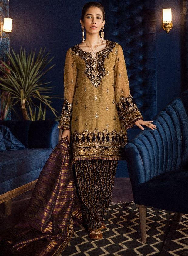Beautiful Pakistani chiffon embroidered outfit in tobacco color