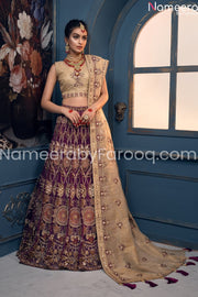 Pakistani Bridal Wedding Wear With Embroidery Overall view